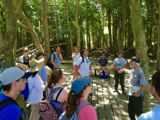 APALISECTION_Fire_Island_Tour3